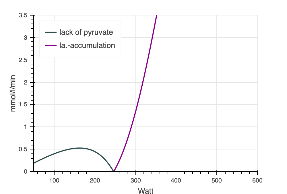 INSCYD Lack of yruvate & lactate accumulation
