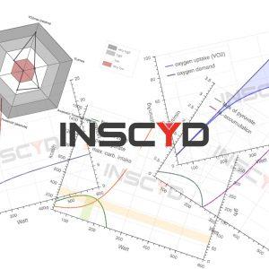INSCYD results